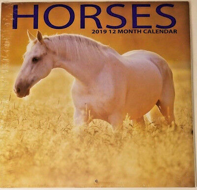 2019 Wall Calendar - Horses -12 Month-12x24 Inches Brand New w