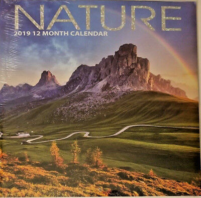 2019 Wall Calendar - Nature -12 Month-12x24 Inches Brand New w