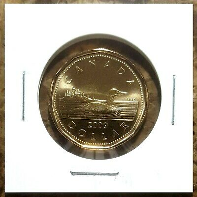 Canada 2009 Loonie BU UNC From Mint Roll!!