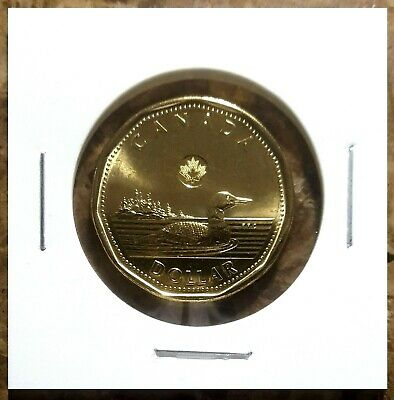 Canada 2013 Loonie BU UNC From Mint Roll!!