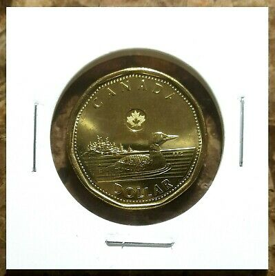 Canada 2014 Loonie BU UNC From Mint Roll!!