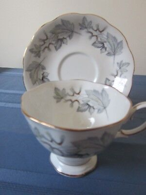 rare royal albert cup and saucer silver maple