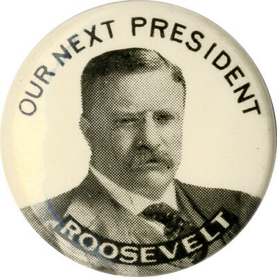 1912 Theodore Roosevelt OUR NEXT PRESIDENT Celluloid Campaign Pinback (2040)