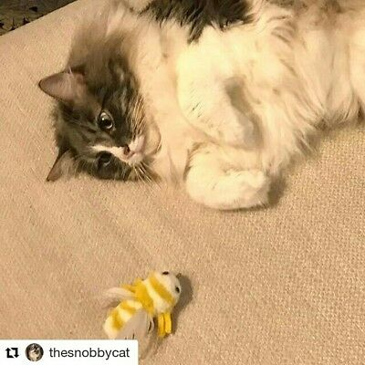 Bumblebee feather Bee Basil cute chase cat teaser cat toy by Tiga Toys handmade