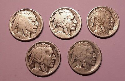 5pc Early Date lot of U.S. Buffalo Nickels