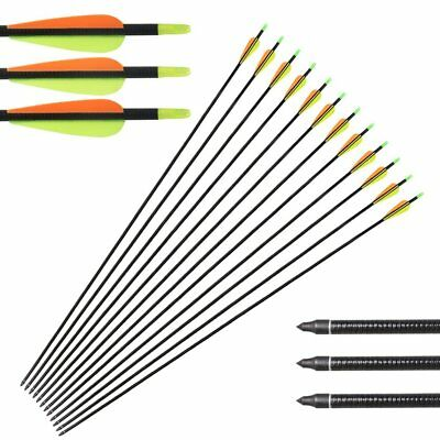 "12PCS 31.5"" Fibreglass Target/Hunting Arrows with Replacement Screw-In tips"