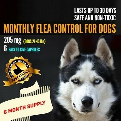 6 Monthly Capsules Flea Control 205mg Dogs 21-45 lbs FAST FREE SHIPPING