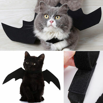 Pet Dog Cat Black Bat Wings Cosplay Wings Costume Party Halloween Decoration +++