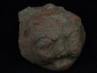 Ancient Teracotta Lion Head Bactrian C.300 BC    #TR6054