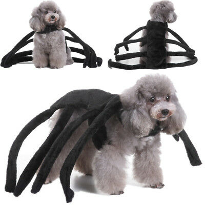Big Spider Cosplay Halloween Pet Dog Party Costume Clothes Puppy Apparel Gifts