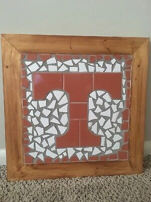 Decorative University of Tennessee Collegiate Wall/Step Tile