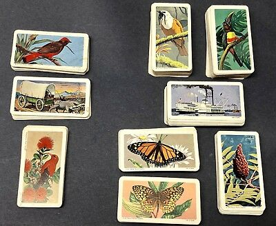 Red Rose Tea Cards 1960's Lot Of 234 Birds Trees Flowers Butterflies More