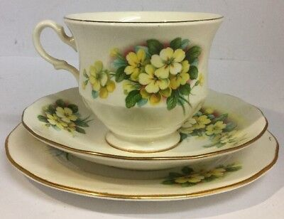 Vintage FLORAL Gainsborough Bone China Trio Teacup, Saucer And Tea Plate - VGC