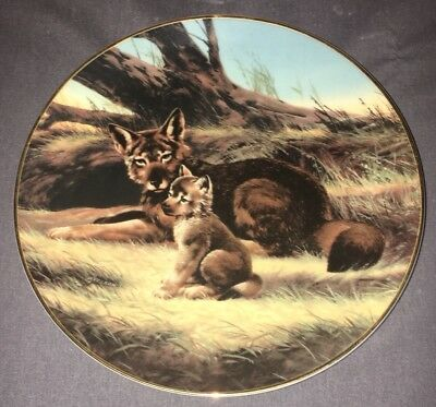 The Red Wolf Decorative Collector Plate Collectible Will Nelson Bradford Exchang