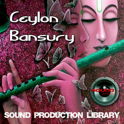 CEYLON BANSURY - huge UNIQUE Perfect WAVE/NKI Multi-Layer Samples Library on DVD