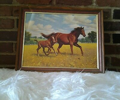 Vintage Framed Art Horse Pony