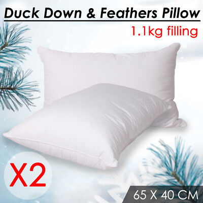 1.2KG 2 x Duck Down Feather Pillow Twin Pack White Cotton Cover Comfort White