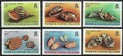 Turks & Caicos Is. 1980 Shells Set. Mnh  See Scan