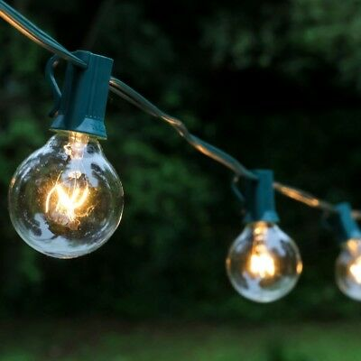 Lumabase Light Globe String Lights in Clear (25-Pack)