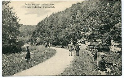 CPA - Carte Postale - Luxembourg - Petite Suisse Luxembourgeoise