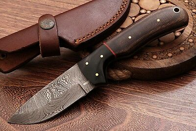 "BeautifulHandmade Damascus  Skinner Knife ""Macarta & buffalo horn  '' (Pb 24) ''"