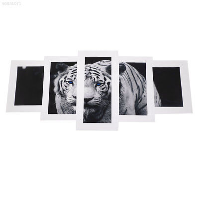CA1B 5pcs White Tiger Art Pictures Large Modern Home Wall Decor Abstract Oil Pai