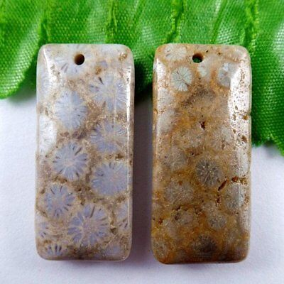 E1.37808 Oblong Natural Nipomo Coral Fossil Pendant Bead 37*17*7mm
