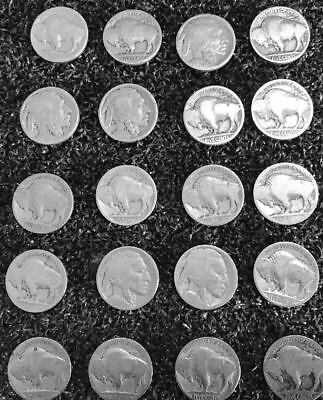 20 Buffalo Nickels (1913-1938) -- REAL CHEAP!