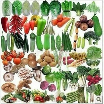 50Pcs Balcony vegetables package seed mix hot organic vegetable seeds