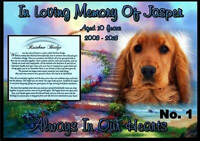 Personalised Pet Memorial Poster - Dog or Cat (6 Designs)