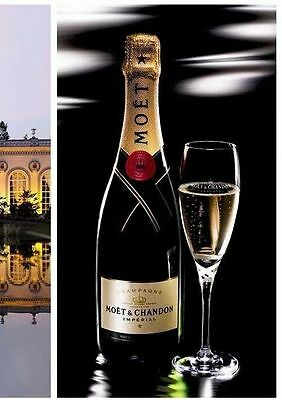 Moet Chandon Champagne Crystal Rare Etched Ribbon Flutes X 2 Unboxed New