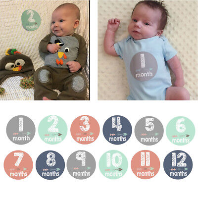 New Baby Pregnant Monthly Photograph Stickers Month 1-12 Milestone Sticker