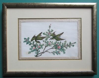 Chinese Painting on Pith/Rice Paper - Birds & Blossom - Framed Circa 1840 Canton