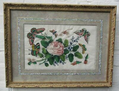 Chinese Painting on Pith/Rice Paper - Rose & Insects - Framed Circa 1840 Canton