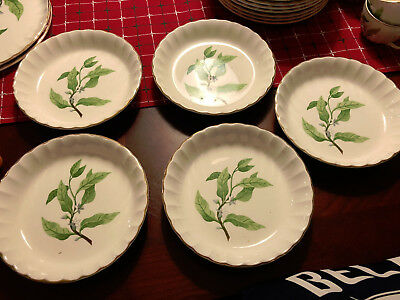 W S George Bolero  - Orange Blossom - Green Leaves - Coupe Soup - 5 Available