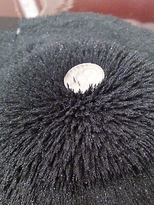 lodestone Magnetic Black Sand 1 pound (very fine) Highest Quality exact as pic