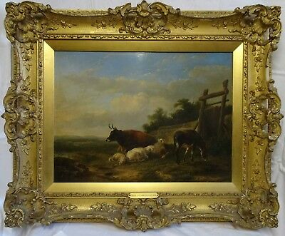 19thc Oil Painting 'Study of Livestock' By Eugene Verboeckhoven c1840 - 1850