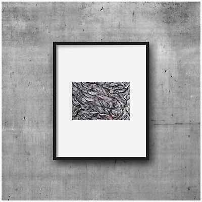 original art, black and white drawing, abstract, pen and ink, zen doodle