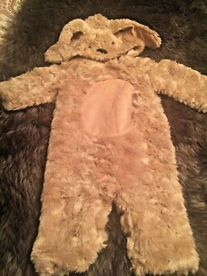 NWOT Pottery Barn Kids Baby Dog Puppy Costume 6-12 Months Warm Adorable