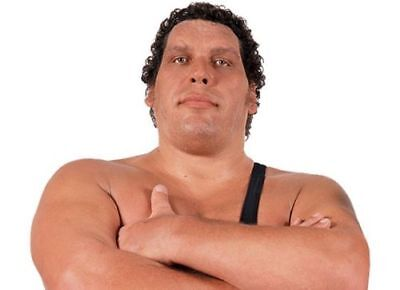 Andre the Giant DVD Set Wrestling