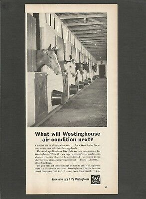 WESTINGHOUSE Air conditioning a stable - 1964 Vintage Print Ad
