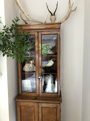 Small Proportions Bookcase Cabinet Original Antique Wavy Glass Rich Patina