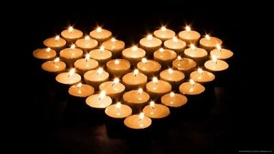 200 x Tealights Long 8 Hour Burning Time White Unscented Party Candle Tea Lights