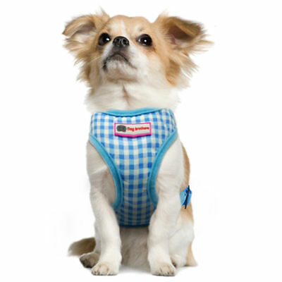 Dog Botherers Cute Check Harness Lead Set Blue Brown Toy Small Miniture Breeds
