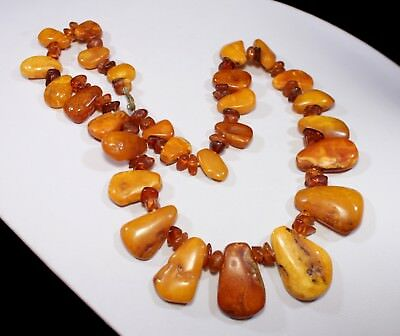 [W] Natural Genuine Butterscotch Egg Yolk Baltic Amber Necklace