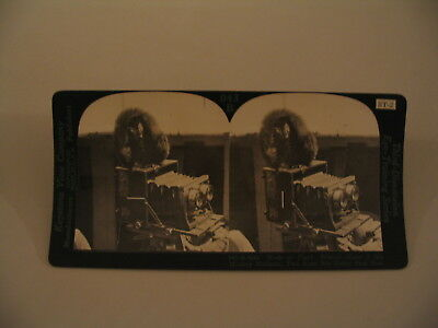 Stereoscopic Camera Stereoview Photo cdii Keystone Two Eyes are Better than One