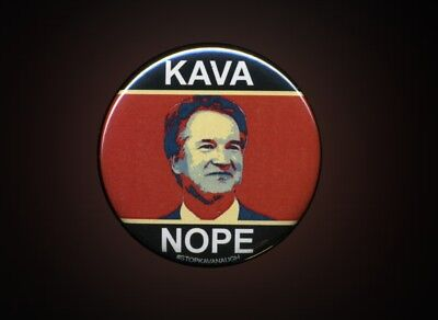 KAVA NOPE Stop Kavanaugh SCOTUS Washington DC Protest button / badge 2.25""