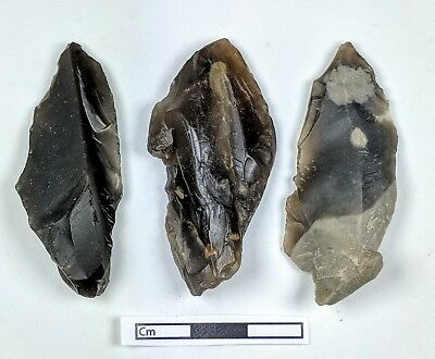 """""""Transitional"""" EUP,Leaf Shaped Projectile Points(L-R-J) c43,500-40,500 years BP"""