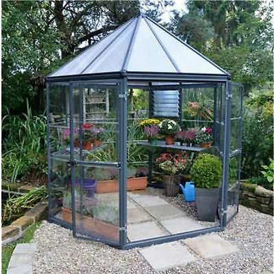 Palram Oasis Hexagonal Greenhouse, Rust Resistant Coated Aluminum Frame