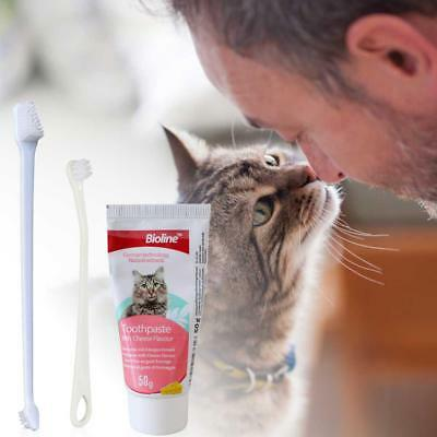Pet Dental Clinic Tooth Paste and Toothbrush Set For Cat Kitty Dental Care Tool